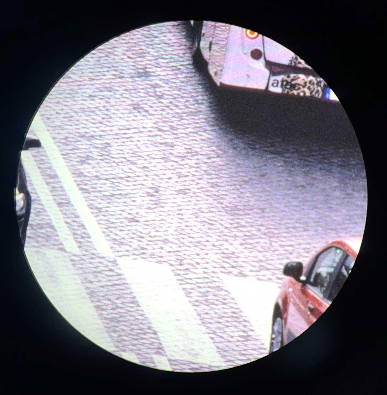Roma al microscopio